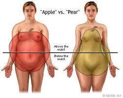 Forma de manzana, mas probable a la enfermedad renal
