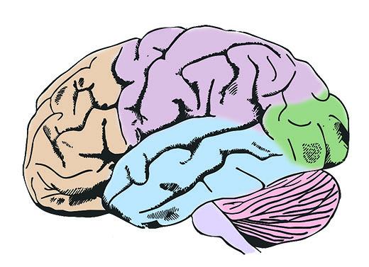 Hablemos sobre accidentes cerebrales