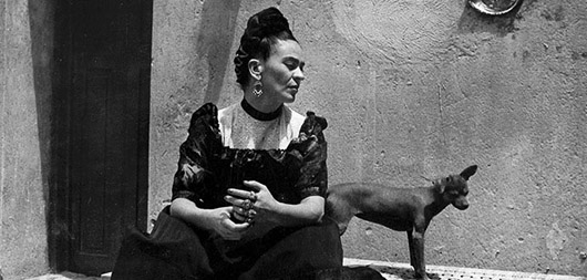 Frida Fotogénica
