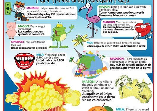 Fun Trivia and Random Facts