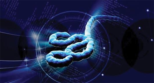 El virus del Ebola: Lo que necesitas saber