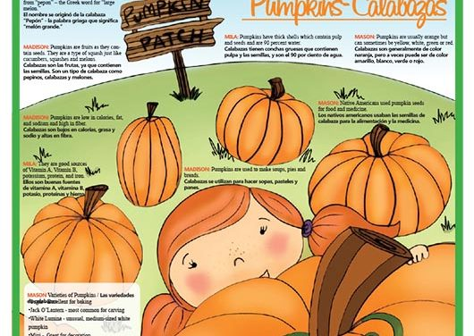 Pumpkins-Calabazas