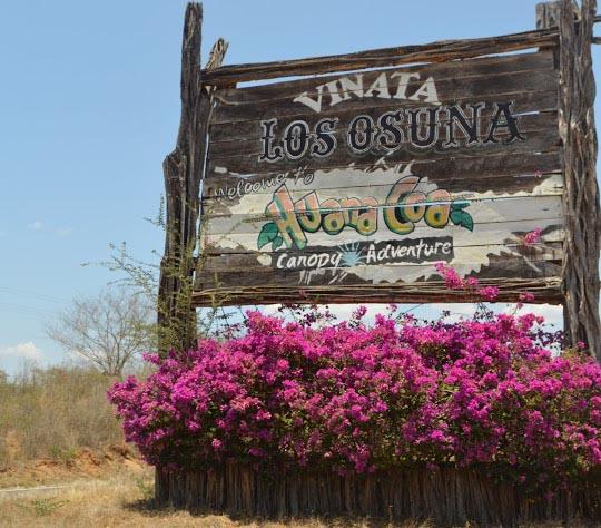 Vinata de los Osuna: Tequila de Sinaloa