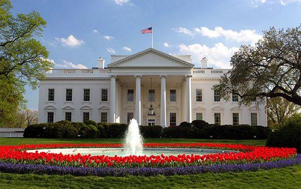 ¡A todo galope! carrera por la presidencia de los EE.UU.