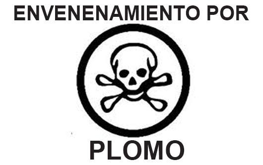 Prevención del envenenamiento por plomo