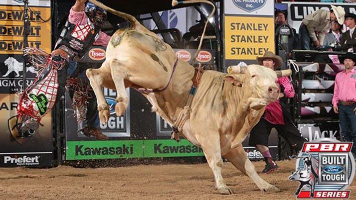 ¡Y montaron toros!: Montadores Profesionales de Toros (PBR) fascinaron a Anaheim