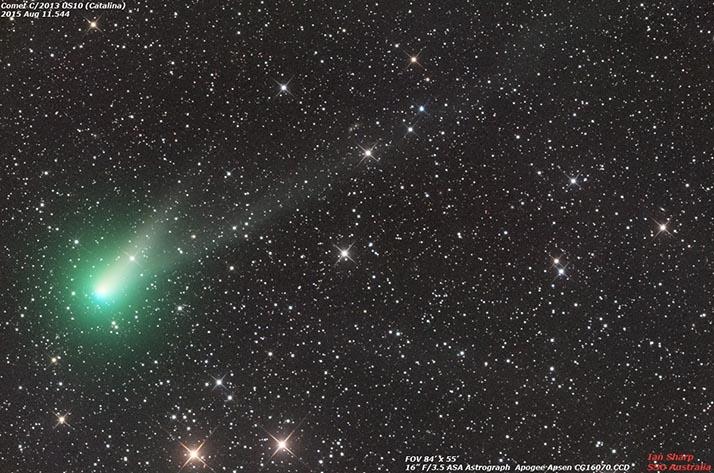 Catalina cometa errante entre las estrellas