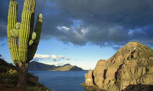 Historia y Naturaleza de Baja California (una visión fotográfica colectiva)