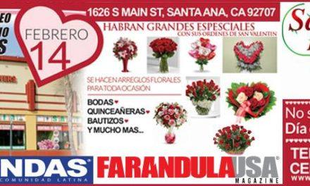 Flores para el amor y la amistad !GRATIS!