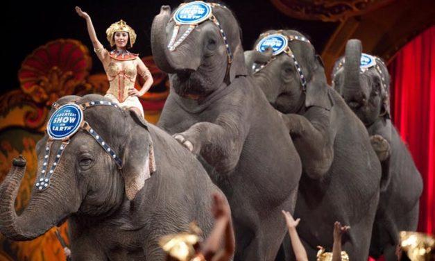 Circo Ringling Brothers tuvo su último espectáculo con elefantes