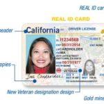 Nuevo Diseño de la Licencia de Manejar y Tarjeta de Identificación