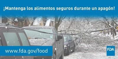 Seguridad de los alimentos durante apagones