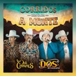 Los Dos de Tamaulipas Exclusiva