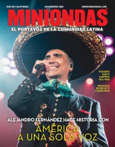 Miniondas Magazine Edición Noviembre 2020