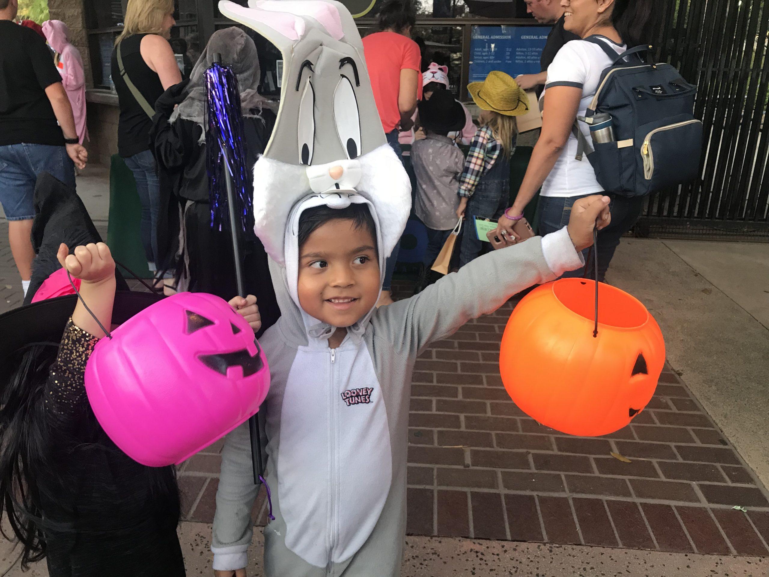 El zoológico de Santa Ana presenta a Boo en el zoológico
